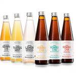 Die ManuTeeFaktur bietet je 3 verschiedene Sorten raw KombuCha und Crafted Tees.