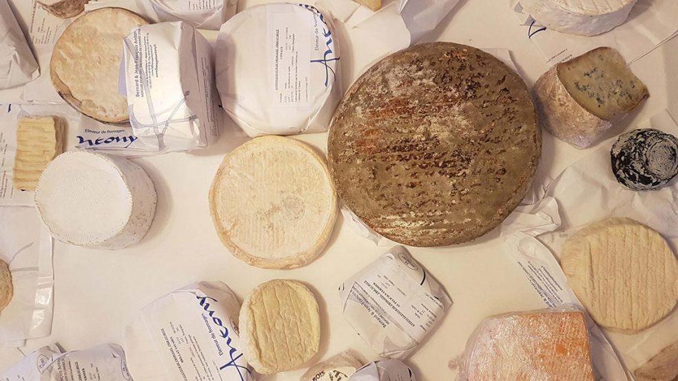 Eine große Auwswahl qualitativ hochwertiger Käse-Sorten begeistern die Gäste von Serkan Akgün.