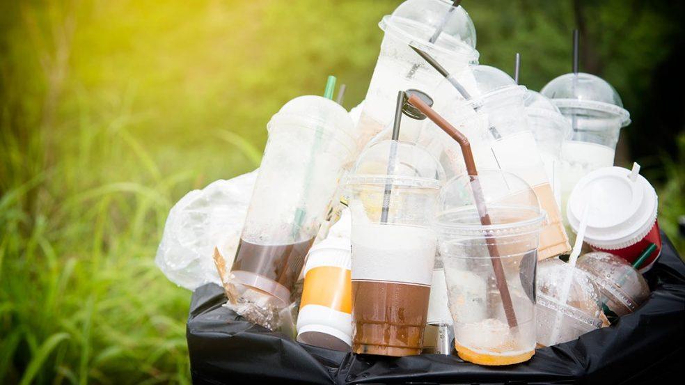 5-Punkte-Plan gegen den Plastikmüll
