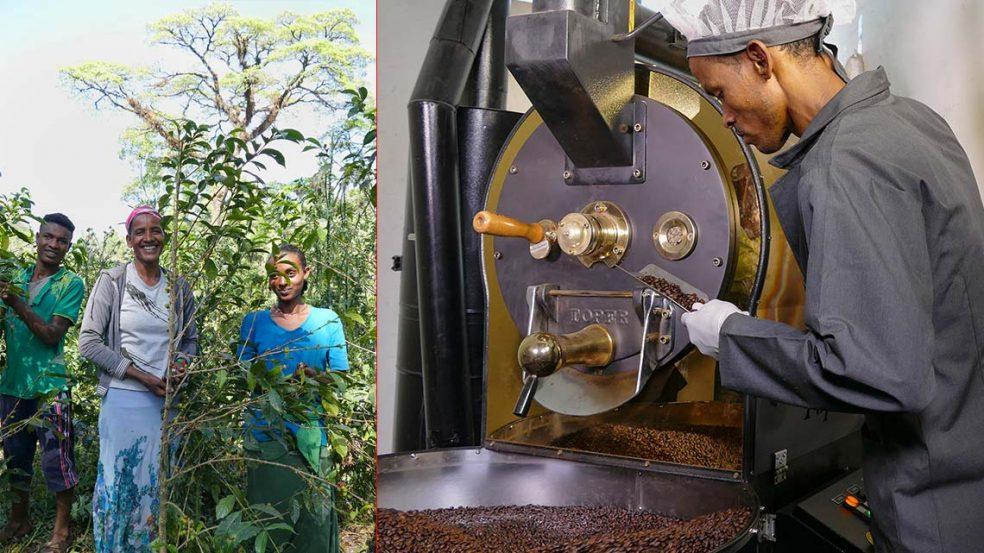 Fairtrade von der Ernte bis zum Verpacken.