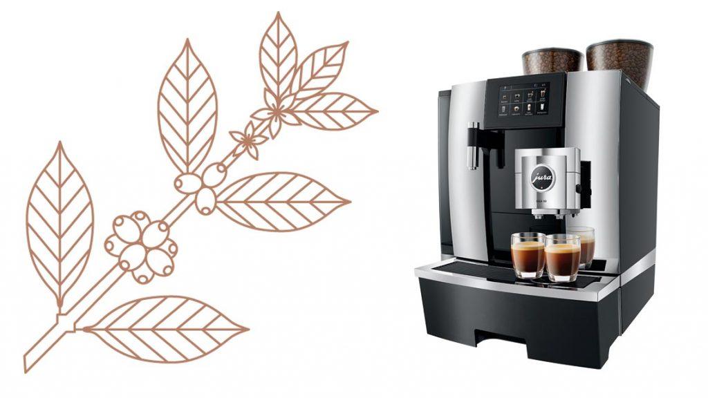 29eb0e9be27f14 Hier ist nicht nur der Kaffee heiß – Dessous im Café – Gastgewerbe ...